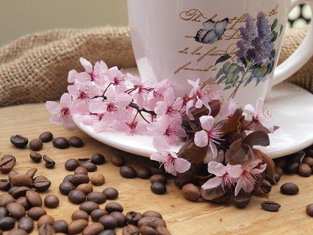 コーヒー豆 選び方